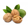 Саженцы Грецкого Ореха в Саратове с гарантией качества